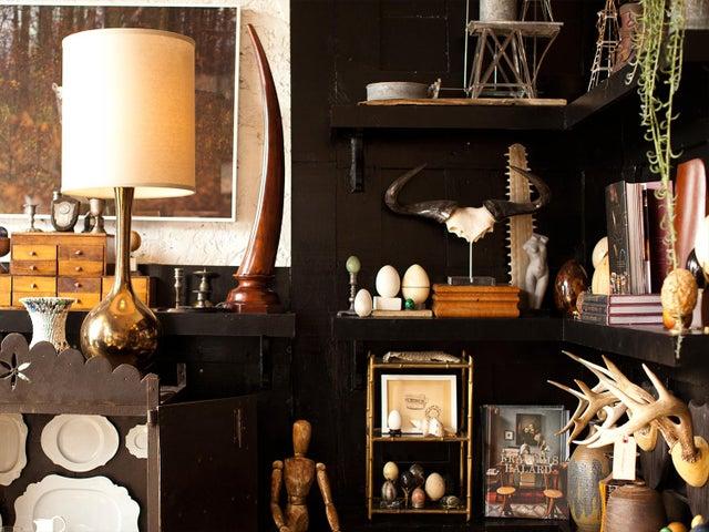 Image of Cabinet of Curiosities