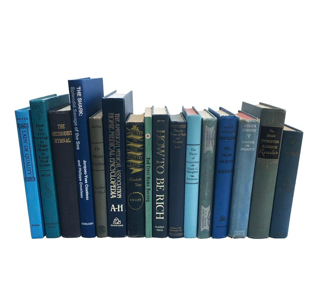 Vintage Blue Book Collection - Set of 16 | Chairish