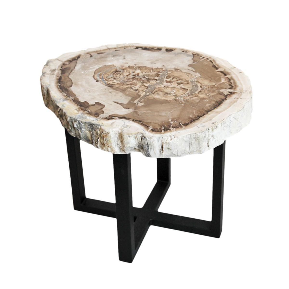 Petrified Wood Slice Side Table