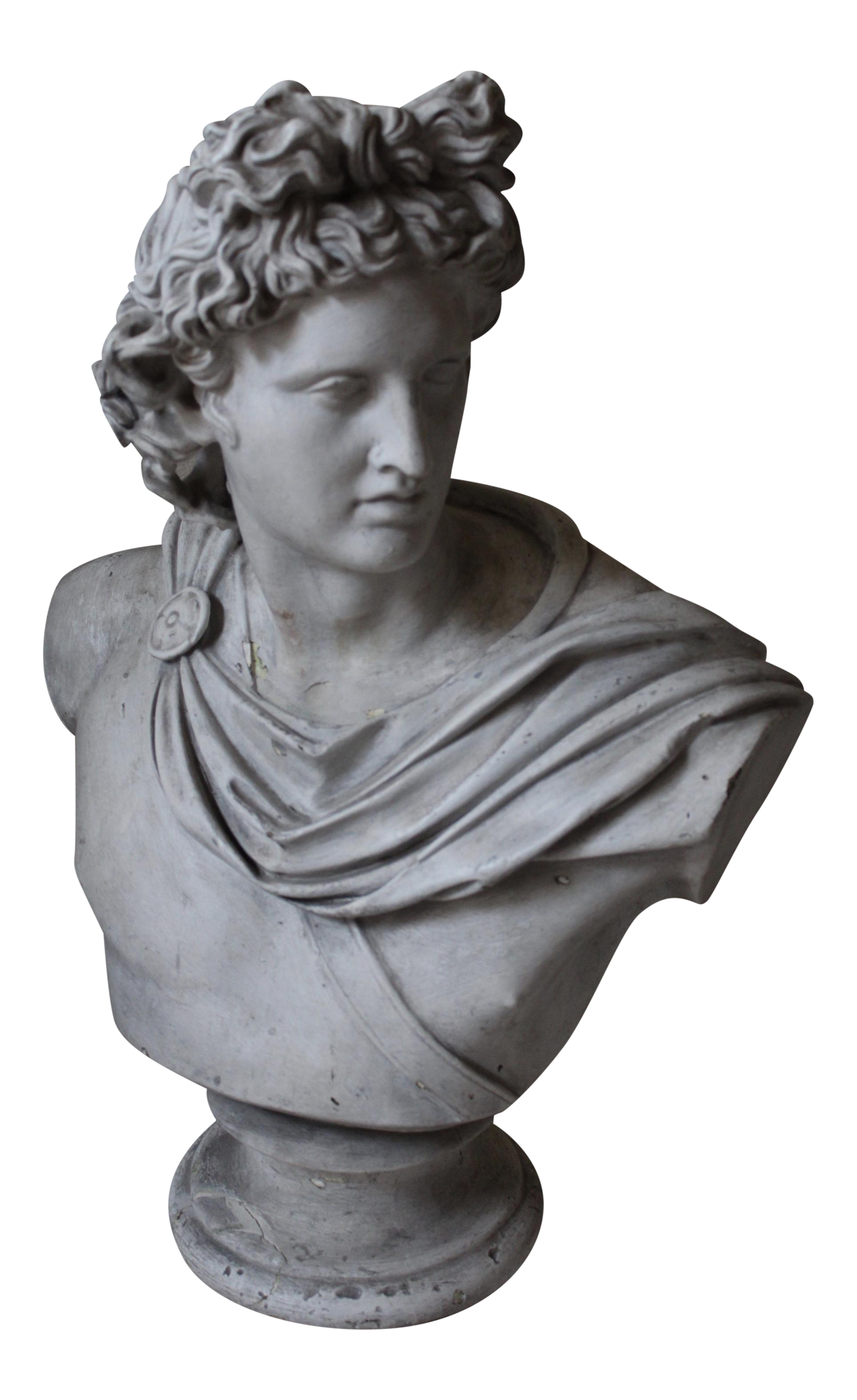 Apollo Belvedere Bust Chairish
