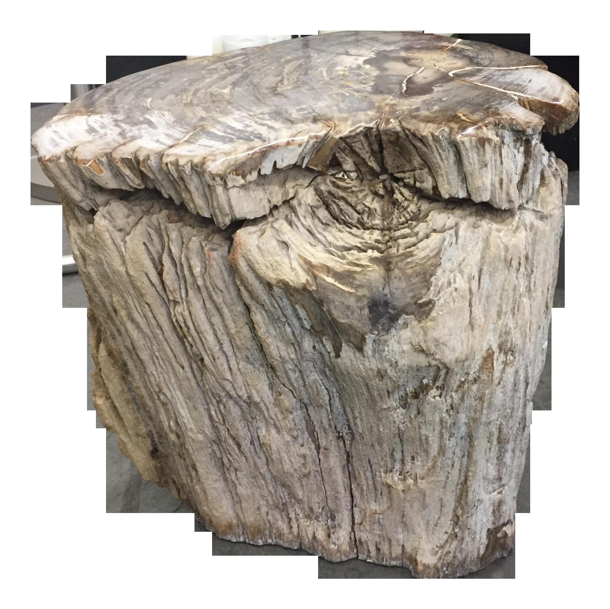 Petrified Wood Stool End Table Chairish