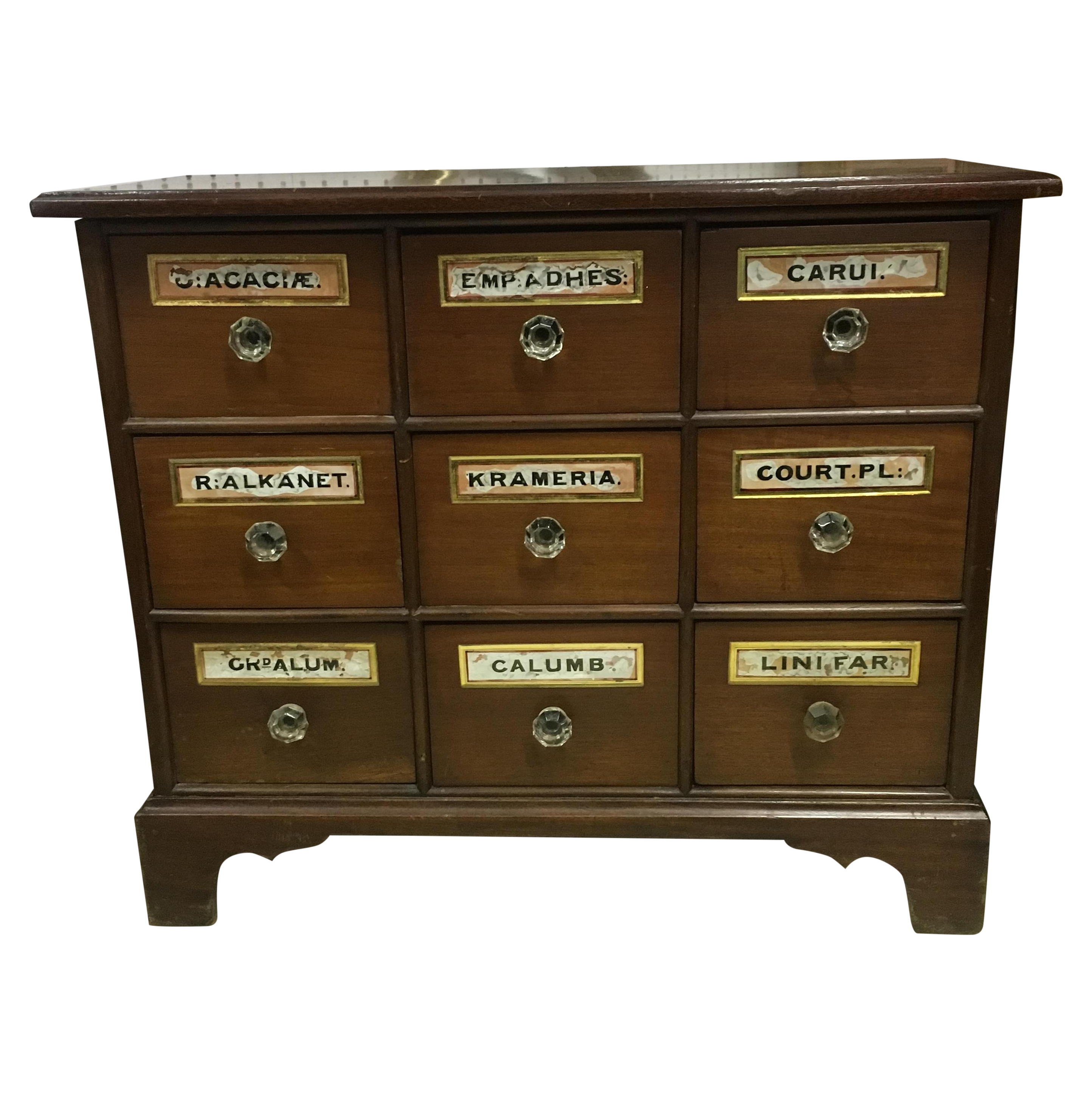 9 Drawer Antique Apothecary Chest Chairish
