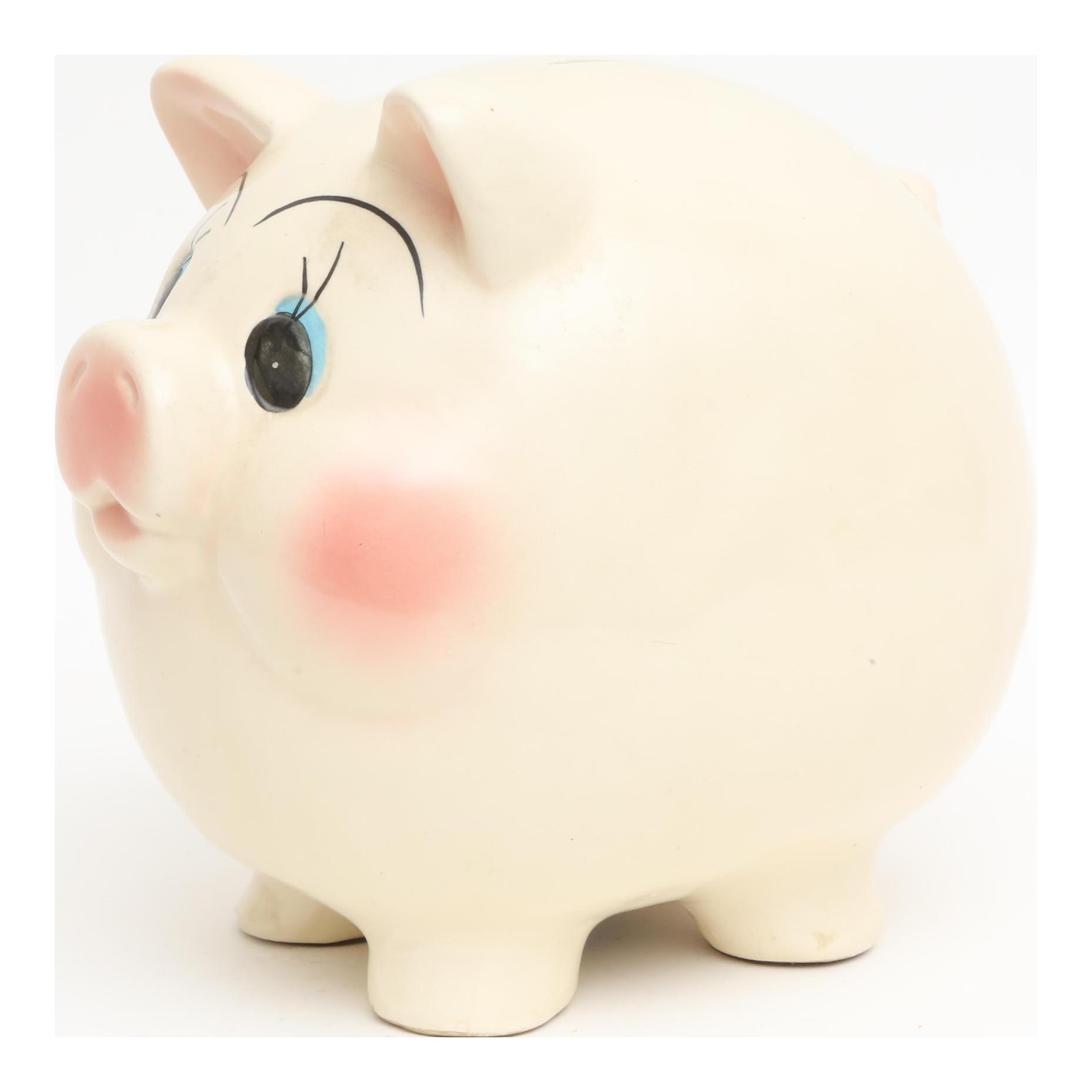 Large Hand Painted Ceramic Piggy Bank Chairish