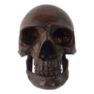 Anatomical Wooden Skull