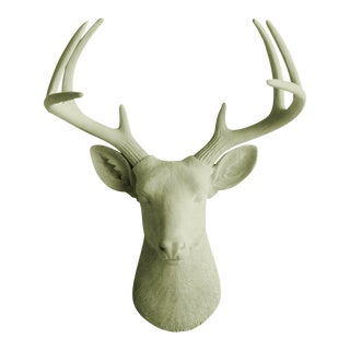 Sage Green Faux Deer Head by Wall Charmers