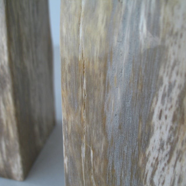 Petrified Wood Bookends - Pair - Image 8 of 9