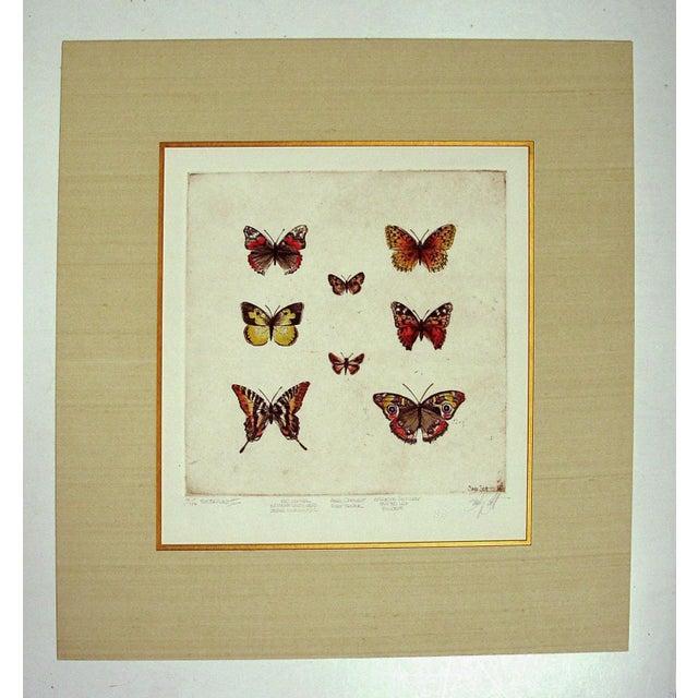 Sandy Scott Etching - Butterflies II - Image 4 of 4