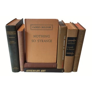 Brown Distressed Books - Set of 8