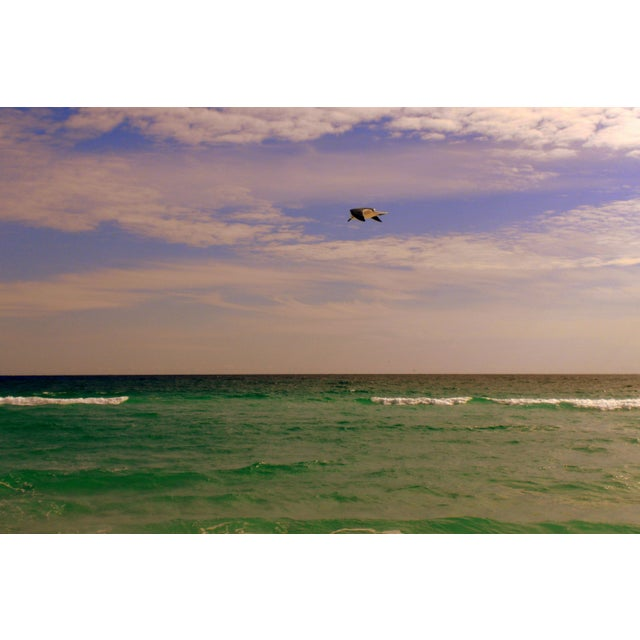 Image of Infinity Beach III Ltd Ed Photography by Alaina