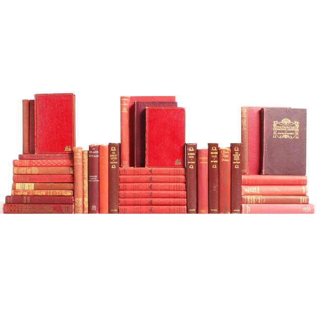 Image of Red & Marsala Classic Books - S/25