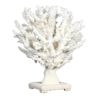 Spectacular Branch Coral Sculpture