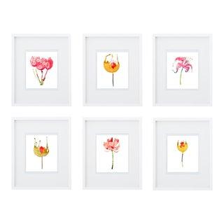 Botanical Art Print Groupings - Set of 6