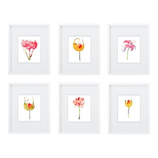 Botanical Art Print Groupings - Set of 6