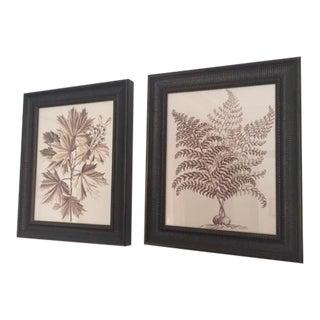 Natural Botanical Prints - Set of 2