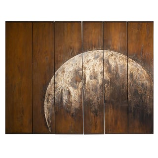 Moon Rise 'Homebound' Wall Screen by Tom Palmer (inspired by image taken from returning Apollo 15 mission)