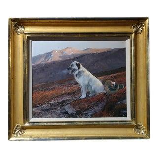 "Michael Coleman ""Pack Dog in the Yukon Territory"""