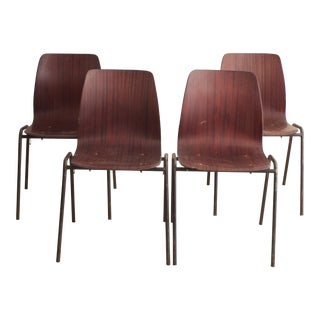Vintage Bentwood Dining Chairs - Set of 4