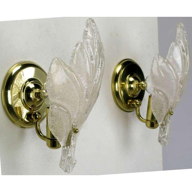 Image of Pair Murano Glass Maple Leaf Wall Sconces
