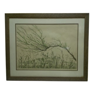 "Limited Edition Print ""Spring Growth"""