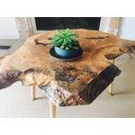 Image of Mod Live Edge Maple Coffee Table