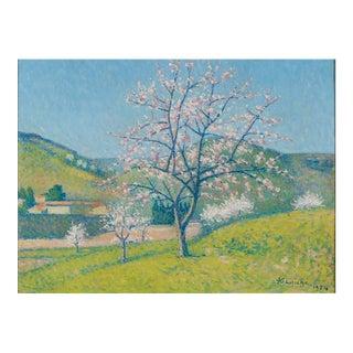 Arbres en Fleur à Alet-les-Bains (Flowering Trees in Alet-les-Bains)