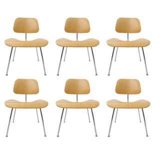 Eames DCM Bent Plywood & Steel Chairs for Herman Miller - S/6