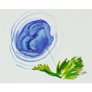 Blue Ranunculus Multimedia