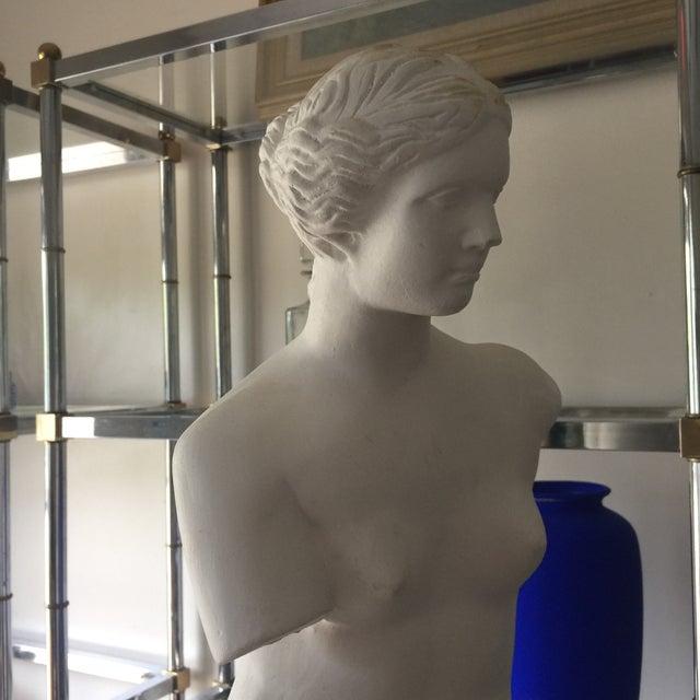 Plaster Tuscany Style Venus De Milo - Image 3 of 5