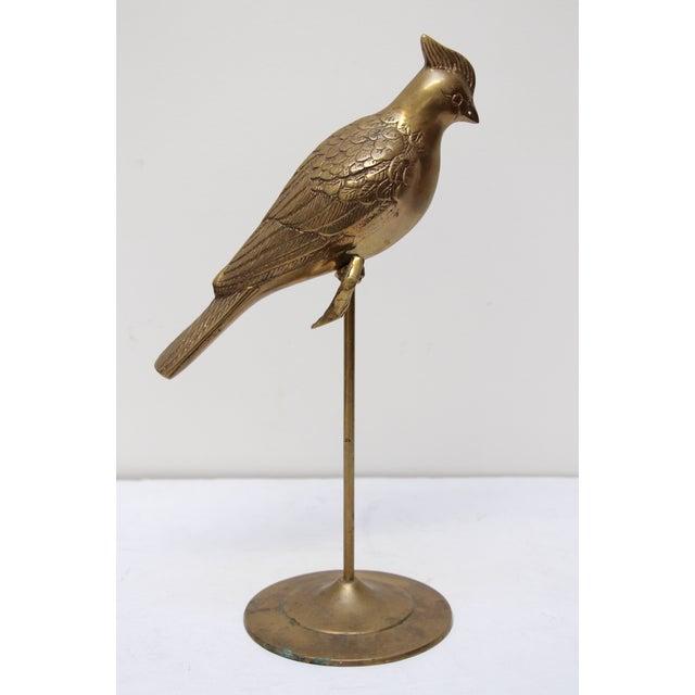 Image of Brass Cardinal on Perch Figurine