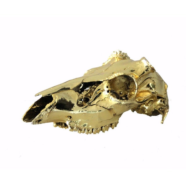 Brass Electroplated Deer Skull - Image 2 of 5