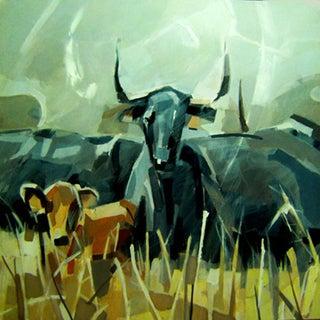 Roaming Bull by Paco Navarro