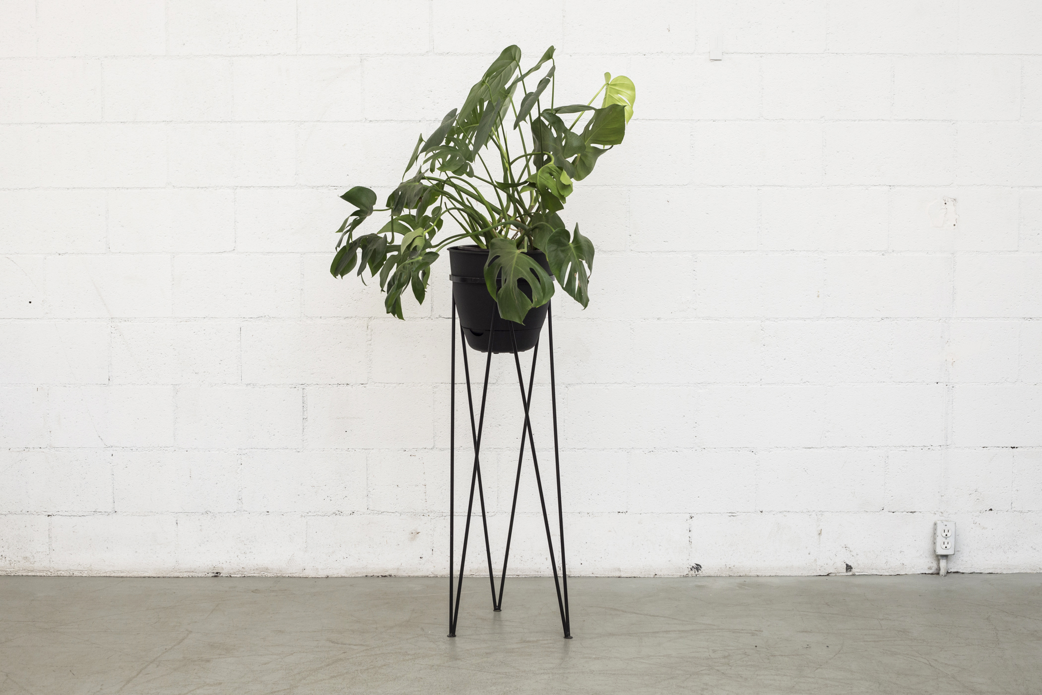 tall hairpin leg plant stand image 2 of 5