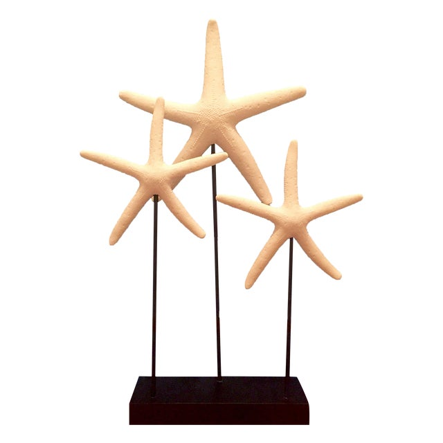 Decorative Starfish on Sandstone Base - Image 1 of 4
