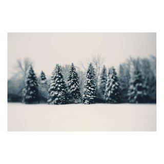 "Alicia Bock ""Winter and Woods"" Floating Print"