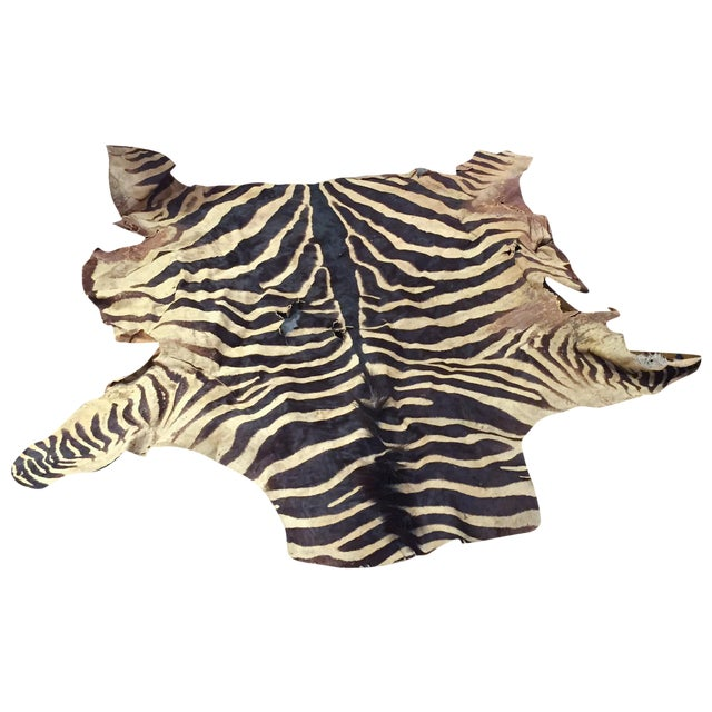 Vintage Brown Zebra Hide Rug - Image 1 of 5