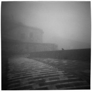 """Foggy Perch"" Black & White Photograph"
