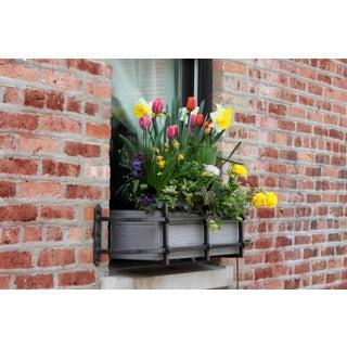 Spring Window Basket Photo by Josh Moulton