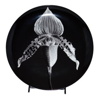 Swid Powell Robert Mapplethorpe Orchid Plate