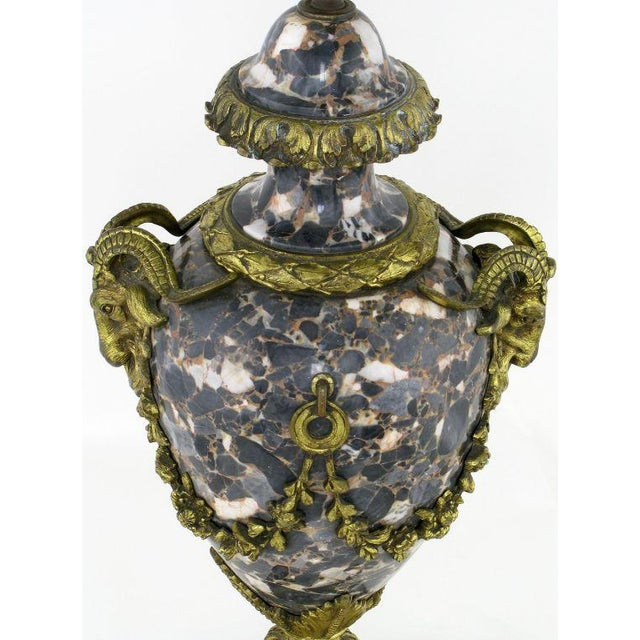 Marble Urn Form Lamp With Bronze Rams Heads And Ormolu - Image 10 of 10