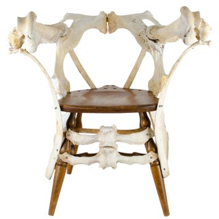 Sculptural Bone Chair