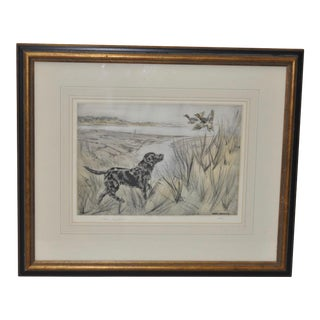Henry Wilkinson Sporting Dog Etching with Aquatint