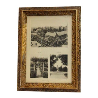 Morgan Estate Photo With Floral Frame
