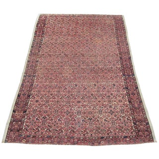 Antique Persian Senneh Rug - 4′3″ × 6′2″