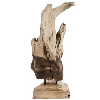 Indonesian Driftwood Fragment With Stand