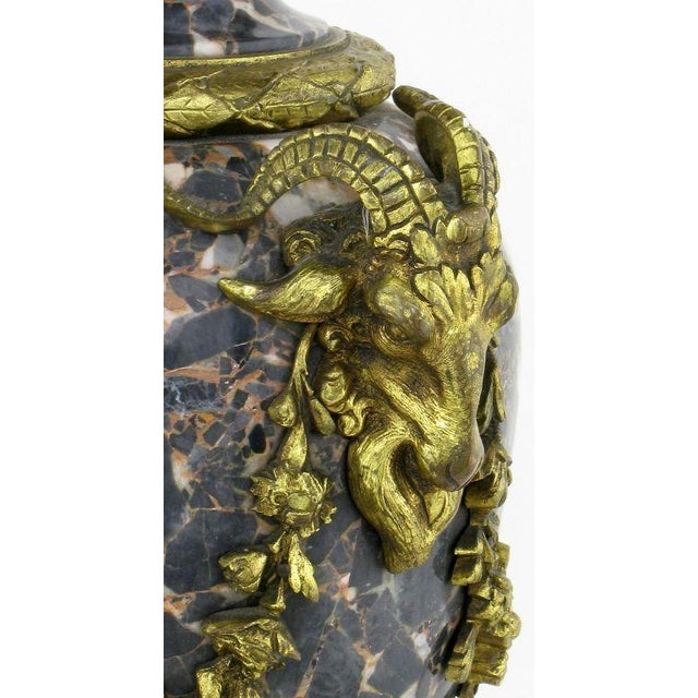 Marble Urn Form Lamp With Bronze Rams Heads And Ormolu - Image 3 of 10