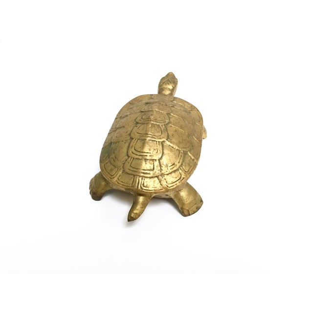 Antique Lidded Brass Turtle Trinket Box - Image 3 of 11