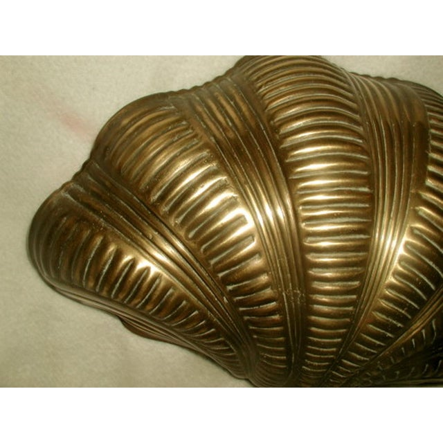 Brass Shell Wall Lights : Chapman Brass Shell Wall Light Chairish