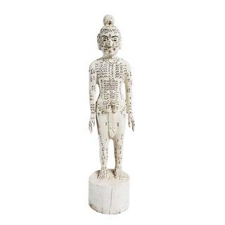 Chinese Acupuncture Statue Medium Male