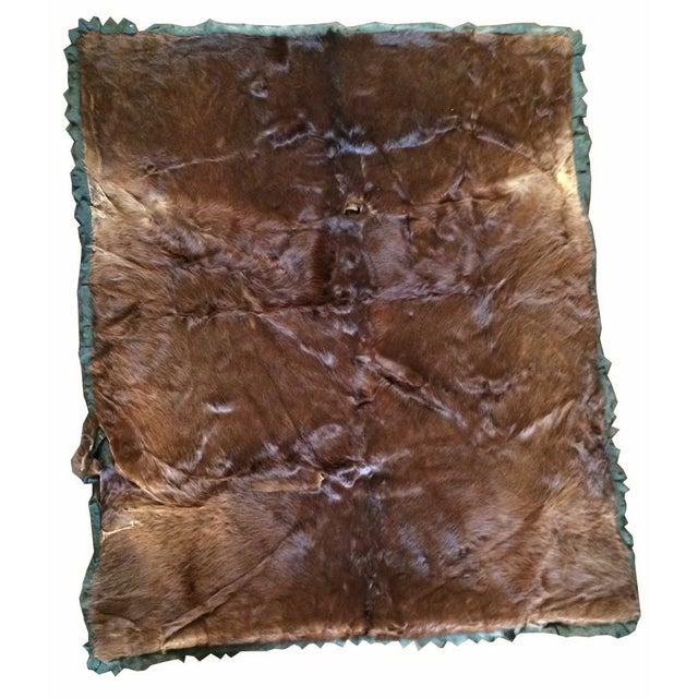 Vintage Bear Skin Rug - 4′7″ × 5′6″ - Image 1 of 2