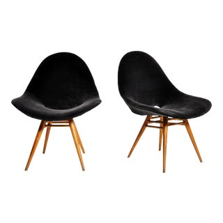 Pair of Italian Style Eggshell-Shape Chairs